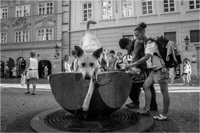 Prague street photo - Celetná ulice